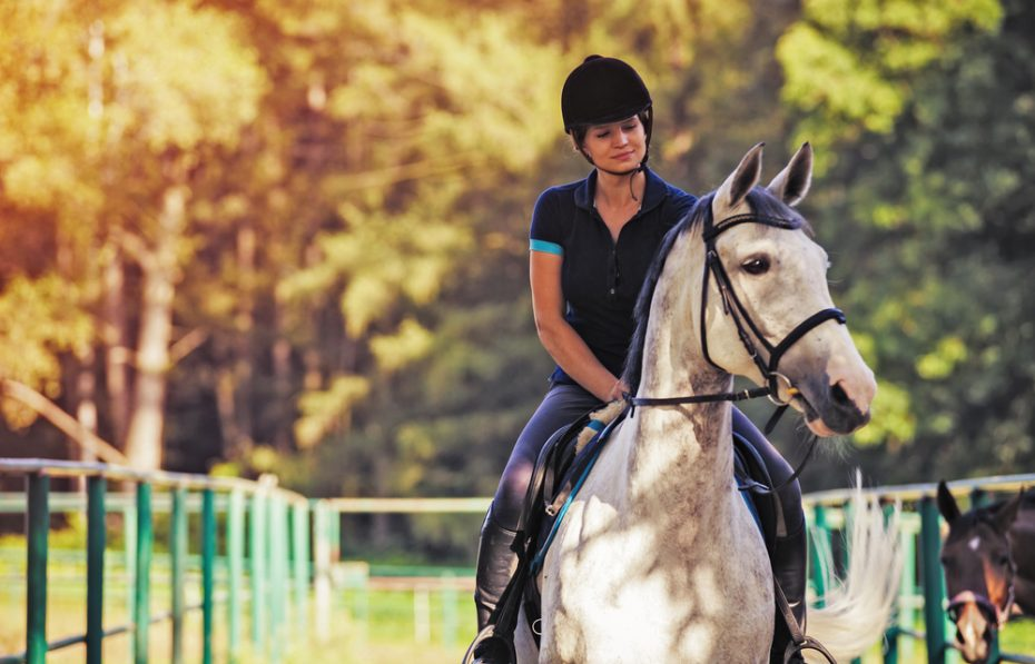 Horse riding clubs in Marbella
