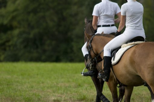Marbella offers equine activities for horse lovers of all levels